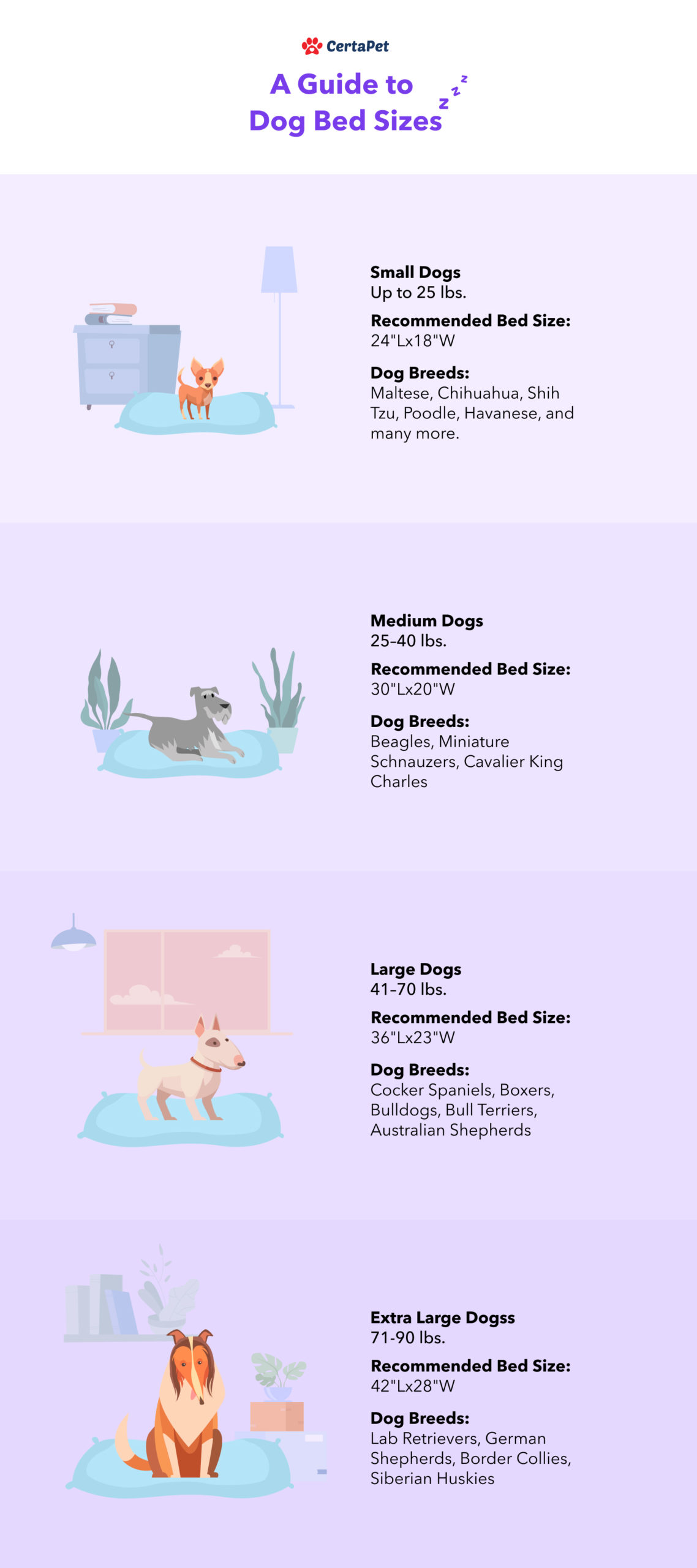 a guide to dog bed sizes